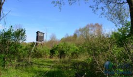 Hunting land in Tigerton, Shawano County  WI