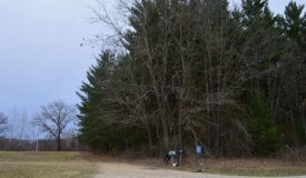Build-able/Hunting Land in Lincoln WI
