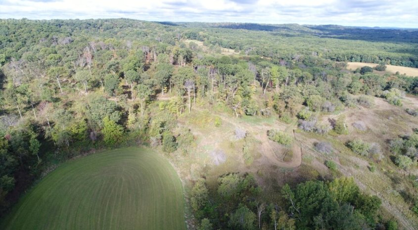 Quality Deer Management Property in Sauk Cty- Wisconsin Dells, WI