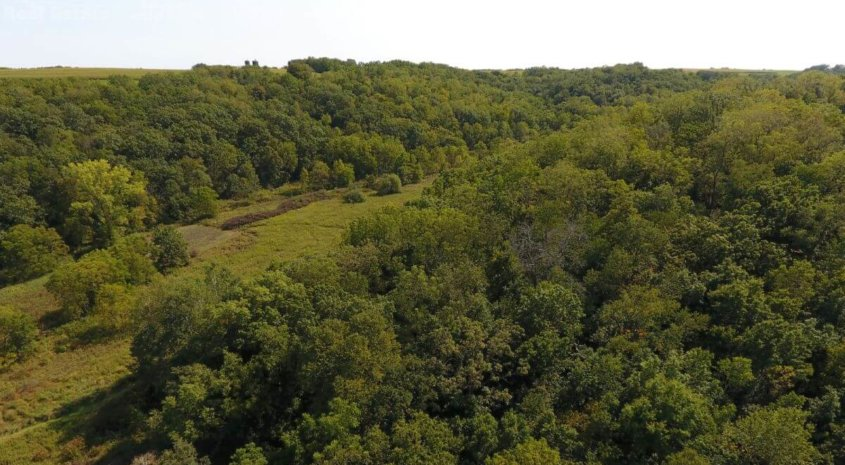 Premium Hunting Property in Southwestern Wisconsin