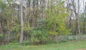 Golliher Farm Subdivision in Westfield – lot 5