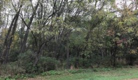 Golliher Farm Subdivision in Westfield – lot 7