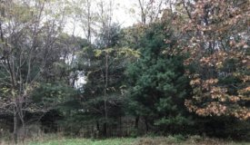 Golliher Farm Subdivision in Westfield – lot 8