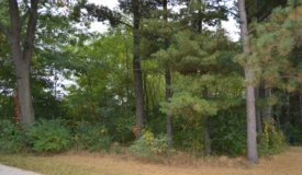 City Lot for Sale Portage Wisconsin