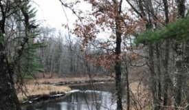 Affordable Buildable Parcel with Hunting in Clark County WI