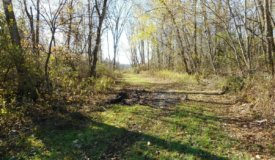 Farm and Hunting Land for Sale in Belgium WI