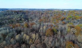 """84 Acres """"Miller Tine Buck Camp"""" Summit WI Juneau County"""