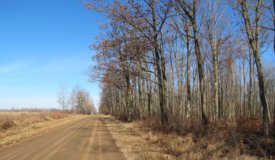 80 Acres for Recreation or Building in Marathon County WI