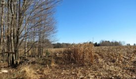 Top Tier Hunting Property in Marathon County