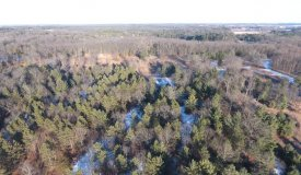 Large 29+/- Acre Parcel for Hunting/Buildable in Adams County WI