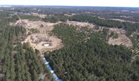 Adams County Wisconsin 80+/- Acres of Hunting and Recreational Land