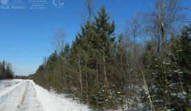 Buildable Wooded Site in Sawyer County WI