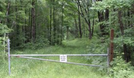 A Rare Beautiful 160 Acres in Wood County WI