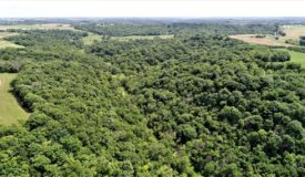 Crawford County, WI  World Class Hunting Property w/ Trout Stream