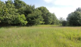 Adams County  Wisconsin Dells, WI  Wooded building site with view of Jordan Lake,