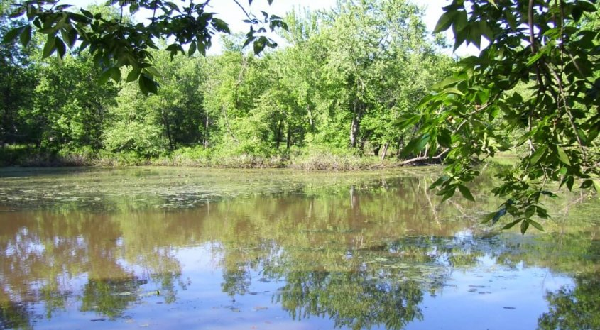 3 Acres  Wooded Waterfront  Along the Lower Wisconsin River, Portage, WI