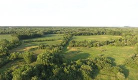 Deer, Turkey and Duck Hunting Haven in Juneau County WI