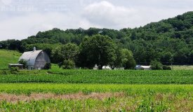 Riverfront Hobby Farm for Sale Richland County