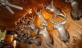Legacy Trophy Hunting Camp in Southwestern Wisconsin