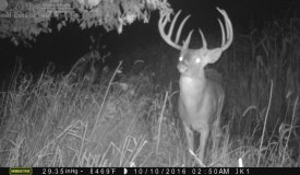 Log Home in Columbia County WI with 250+ acres of Prime Whitetail Hunting