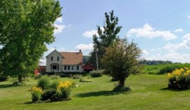 Country  Farm in Sauk County on 43 Acres. Historic Renovated 1912 Farm House in WI