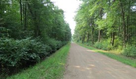 40 Acre Parcel Great for Hunting in Portage County WI