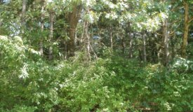 Vacant Land Bring Your Own Builder Portage Wisconsin