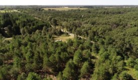 Whimsical Recreational Property For Sale in South Central Wisconsin