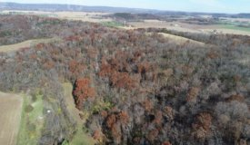 Wooded Acreage with Pasture or Tillable in Columbia County