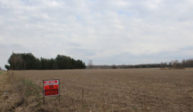 Acreage in Northern Clark County with Income Producing Ag. Land and Woods