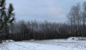 Excellent Hunting in Sought After Area of Wood County WI