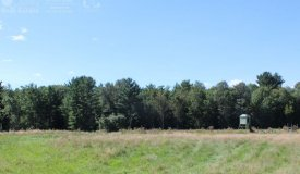 Lot Within Walking Distance to Black River Clark County WI
