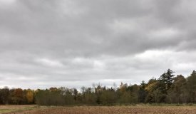Great Opportunity to Build Your Dream Country Home Jackson County WI