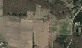 Excellent Farm Land Available South of Amherst WI