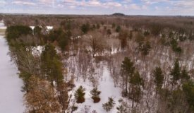 Charming Recreational Land For Sale in Adams County, Wisconsin