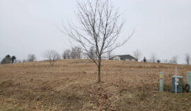 Buildable Lot in Onalaska Wisconsin