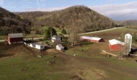 Turn-key Organic Poultry Farmland with Buildings and Home Vernon County