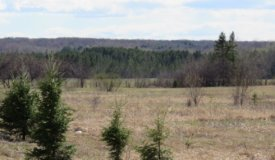 20 Acres Offering Unlimited Potential Bayfield County