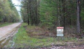 Smaller Parcel with Abundant Deer & Turkey in Jackson County WI