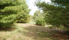 38-Acre Parcel Located in Adams county