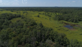 Stunning Recreational Land For Sale in Adams County, WI