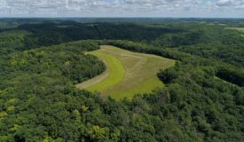 Hunting Land for Sale in Vernon County, WI