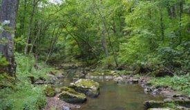40 Acre Parcel on Otter Creek Sauk County WI