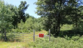 37 +/- Acres Fully wooded Hunting Land Wood County WI