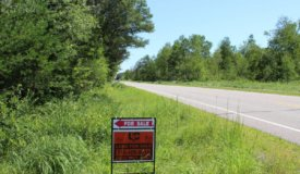 34+/- Hunting Land in Wood County WI