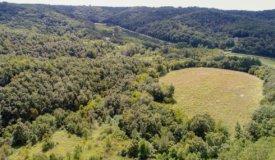 Monroe County Private Wildlife Sanctuary