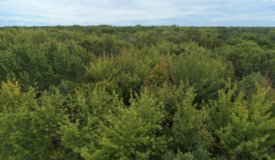 Priced to Sell Hunting Land in Juneau County, WI