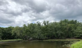 Wisconsin River Hunting Land in Columbia County