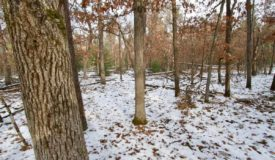 Buildable Lot 3 Within City Limits of Adams, WI
