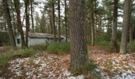 Affordable Wooded Land with Building Site For Sale in South Central Wisconsin